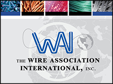 An illustrated image including WAI's logo and branding.